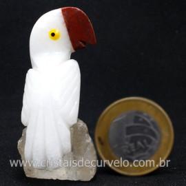 Periquito Pedra Dolomita Branca Passaro Base Mineral Natural cod 128288