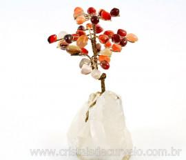 Árvore Felicidade Pedra Agata Cornalina na Drusa REFF AD8610