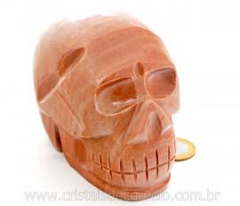 Cranio Pedra Dolomita Marrom Natural Caveira Esculpido Skull Stone Cod CM1.015