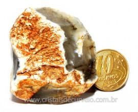 Opala Pedra Bruto Orgânico Fossilizado P/ Coleção Cod 104331