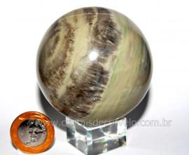 Esfera Pedra Dolomita Cinza Bola Mineral Natural Cod ED8177
