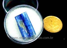 Cianita Azul Canudo No Estojo Natural de Garimpo Cod CA6864