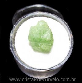Espodumena Verde Fonte Litio Pedra Natural No Estojo 115681