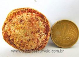 Silimanita Mineral Natural Para Colecionador Pedra Brasileira Cod 88.7