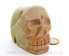 Cranio Pedra Dolomita Marrom Natural Caveira Esculpido Skull Stone Cod CM731.2