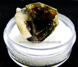 Esfenio Titanita Verde Mineral Natural No Estojo Para Colecionador Exigente Cod ET41.9