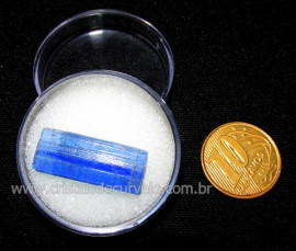 Cianita Azul Canudo No Estojo Natural de Garimpo Cod CA3278