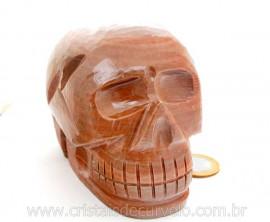 Cranio Pedra Dolomita Marrom Natural Caveira Esculpido Skull Stone Cod CM1.086
