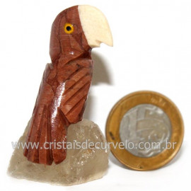 Periquito Pedra Dolomita vermelho Passaro Base Mineral Natural cod 128272