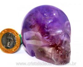 Cranio Pedra Ametista Caveira Esculpido Skull Stone Cod CA1471