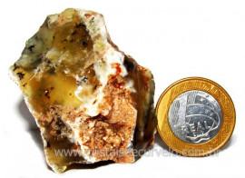 Opala Pedra Bruto Orgânico Fossilizado P/ Coleção Cod 104335