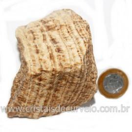 Aragonita do Peru Pedra Bruto Mineral de Garimpo Cod 122983