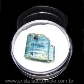 Cianita Azul Canudo No Estojo Natural de Garimpo Cod 115800