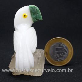 Periquito Pedra Dolomita Branca Passaro Base Mineral Natural cod 128286