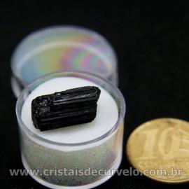 Turmalina Preta Canudo no Estojo Para Colecionar Cod 126936