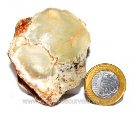 Opala Pedra Bruto Orgânico Fossilizado P/ Coleção Cod 104339