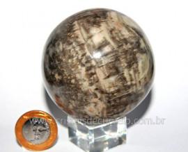 Esfera Pedra Dolomita Cinza Bola Mineral Natural Cod ED4062
