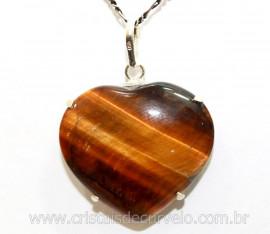 Pingente Coração Olho de Tigre Prata 950 Garra REFF CP8861