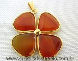 Pingente Trevo Agata Cornalina  Pedra Natural Castoação Envolto Banho Dourado