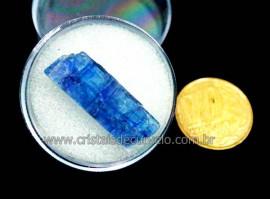 Cianita Azul Canudo No Estojo Natural de Garimpo Cod CA6230