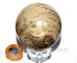 Esfera Pedra Dolomita Cinza Bola Mineral Natural Cod ED8073
