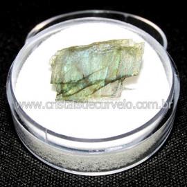 Labradorita Canadense Mineral Natural No Estojo Cod 114218