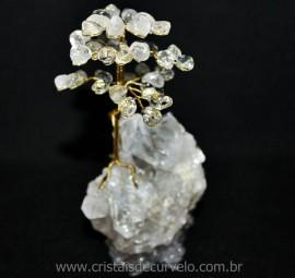 Árvore Da Felicidade Pedra Cristal na Drusa REFF 101696