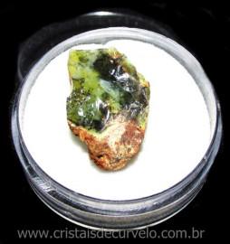 Opala Verde Pedra Genuina Para Coleçao no Estojo Cod 115877