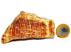 Aragonita do Peru Pedra Bruto Mineral de Garimpo Cod AP7933