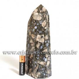 Ponta Riolita Lava Vulcânica Pedra Grande 17cm Cod 120981