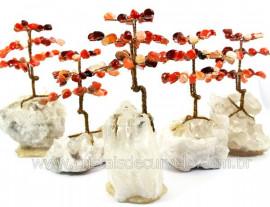4 Arvore Felicidade Pedra Agata Cornalina na Drusa REFF AD2460