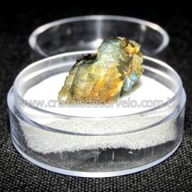 Labradorita Canadense Mineral Natural No Estojo Cod 114220