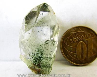 clorita-36.4-45355-std.jpg