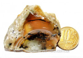 Opala Pedra Bruto Orgânico Fossilizado P/ Coleção Cod 104330