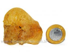 Ambar Brasileiro ou Copal Fossilizado Organico Cod AC4676