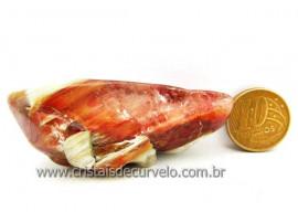 Hornblenda Natural Incrustado no Cristal de Quartzo Brilho Extra Cod 34.8
