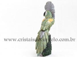 Pássaro Cacatua Pedra Dolomita Base Drusa Ametista cod 112407