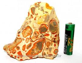 Leopardita ou Jaspe Leopardo Natural Da Africa Pedra Para Coleção Cod JL8996