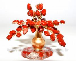 Árvore Da Felicidade Pedra Rolada Jaspe Vermelho REFF AJ3603