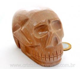 Cranio Pedra Dolomita Marrom Natural Caveira Esculpido Skull Stone Cod CM903.3