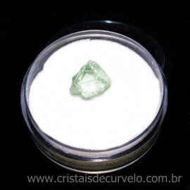 Hidenita ou Kunzita Amarela No Estojo P/ Coleçao Cod  115467